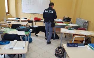 http://www.seguonews.it/caltanissetta-controlli-nelle-scuole-studente-trovato-in-possesso-di-un-borsellino-rubato-a-una-liceale