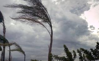 https://www.seguonews.it/caltnissetta-allerta-meteo-per-forti-raffiche-di-vento-disposta-la-chiusura-di-cimitero-e-ville-comunali