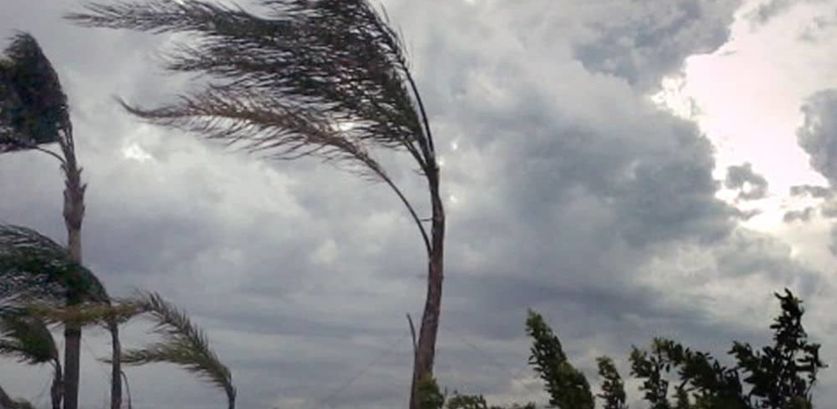 Caltanissetta, allerta meteo per forti raffiche di vento. Disposta la chiusura di cimitero e ville comunali