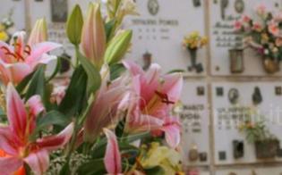 http://www.seguonews.it/vile-atto-vandalico-a-gela-rubano-i-fiori-sulla-tomba-della-giovane-vittoria-caruso-e-danneggiano-i-vasi