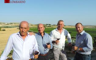 Il vino siciliano piace sempre più, azienda di San Cataldo conquista due medaglie d'oro
