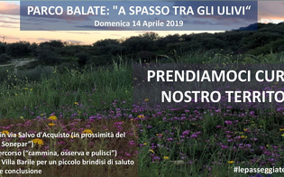http://www.seguonews.it/legambiente-caltanissetta-walk-watch--clean-a-spasso-tra-gli-ulivi-del-parco-balate