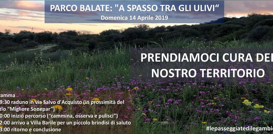 "Legambiente Caltanissetta: ""Walk, Watch & Clean: a spasso tra gli ulivi del Parco Balate"""