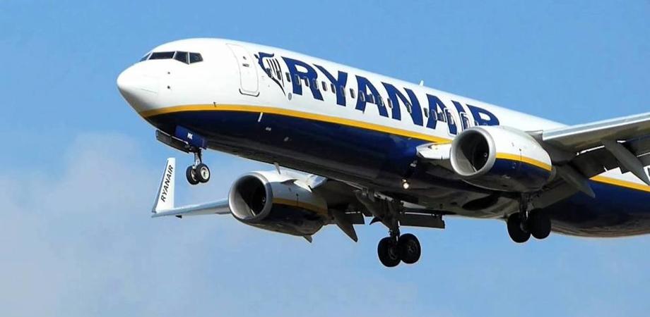 Paura in volo, tre aerei dirottati da Catania a Palermo per uno stormo di uccelli