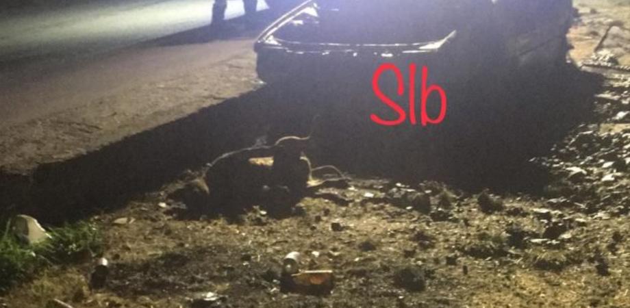 Cane legato e arso vivo: orrore a Trabia. Scatta l'indignazione degli ambientalisti