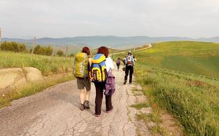 http://www.seguonews.it/il-comune-di-caltanissetta-aderisce-alla-via-dei-frati-un-percorso-naturalistico-di-antichi-sentieri-con-ottime-potenzialita-turistiche