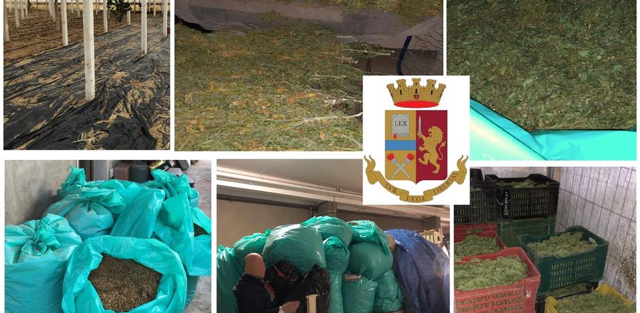 A Gela maxi sequestro di marijuana, trovati 770 chilogrammi di stupefacente: quattro arrestati