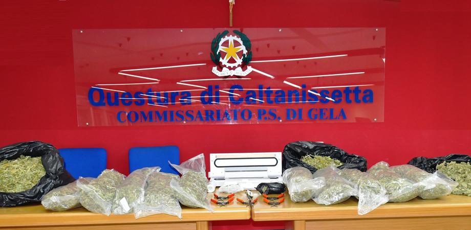 Butera, operazione antidroga: sequestrati in un casolare 15 chili di marijuana pronta per lo spaccio. Arrestate quattro persone