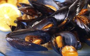 http://www.seguonews.it/cozze-dalla-grecia-contaminate-dal-virus-dellepatite-a-allarme-in-italia-non-mangiarle-crude