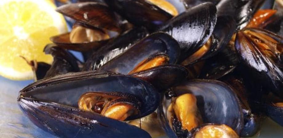 """Cozze dalla Grecia contaminate dal virus dell'epatite A, allarme in Italia: """"Non mangiarle crude"""""""