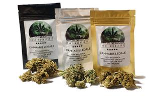 https://www.seguonews.it/vietata-la-vendita-dei-prodotti-derivati-dalla-cannabis-light-lo-ha-stabilito-la-cassazione-