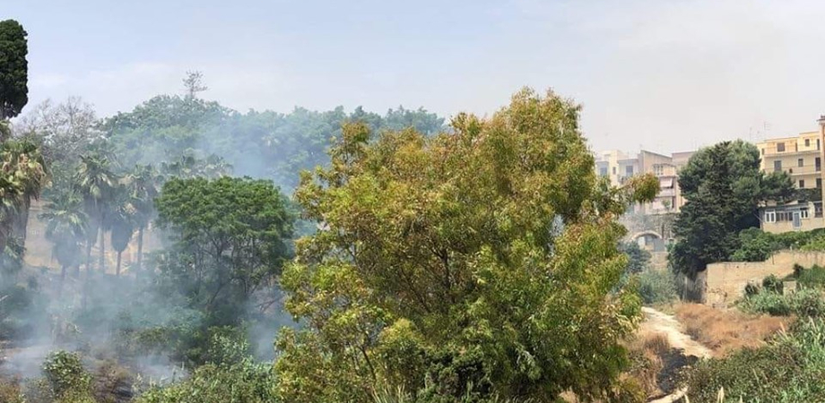 Gela, ancora incendi in città: rogo all'Orto Pasqualello. Ad alimentare le fiamme le alte temperature