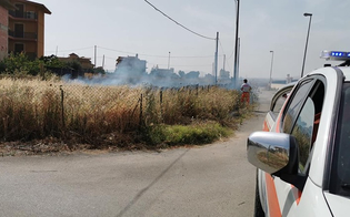 https://www.seguonews.it/gela-incendio-in-contrada-marchitello-le-fiamme-divorano-alcuni-terreni-incolti