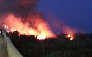 http://www.seguonews.it/gela-da-ore-brucia-una-parte-del-litorale-sul-posto-vigili-del-fuoco-e-protezione-civile