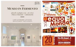 http://www.seguonews.it/museo-in-fermento-ed-equomondo-iniziative-a-caltanissetta-nellambito-dei-progetti-sprar