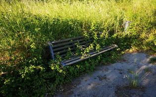 http://www.seguonews.it/caltanisseta-un-lettore-denuncia-dopo-tante-belle-parole-il-parco-dubini-nel-degrado