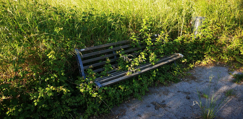 """Caltanisseta, un lettore denuncia: """"Dopo tante belle parole il parco Dubini è nel degrado"""""""