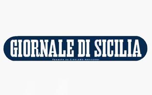 http://www.seguonews.it/vertenza-al-giornale-di-sicilia-per-i-giornalisti-lazienda-ha-utilizzato-toni-inaccettabili-e-diffamatori-proclamato-lo-sciopero
