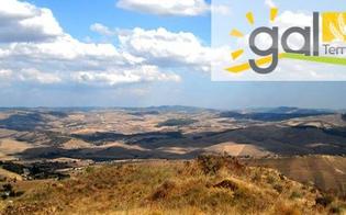 http://www.seguonews.it/gal-terre-del-nisseno-approvato-il-bilancio-e-deliberata-la-reintegrazione-del-capitale-sociale