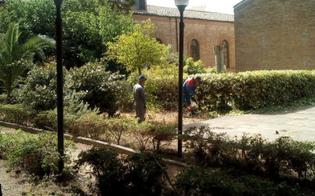 http://www.seguonews.it/operai-al-lavoro-per-sistemare-i-giardini-dellistituto-testasecca-di-caltanissetta-siglata-una-convenzione