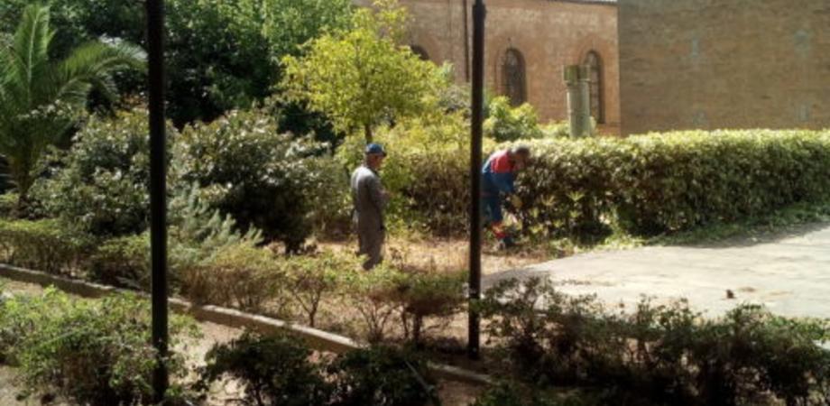 Operai al lavoro per sistemare i giardini dell'istituto Testasecca di Caltanissetta, siglata una convenzione