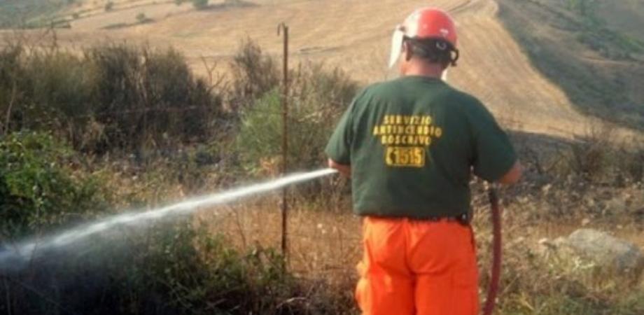 Forestali senza stipendio di giugno: dichiarato lo stato di agitazione mentre la Sicilia continua a bruciare