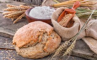 http://www.seguonews.it/legambiente-caltanissetta-organizza-una-giornata-sui-grani-antichi-locali