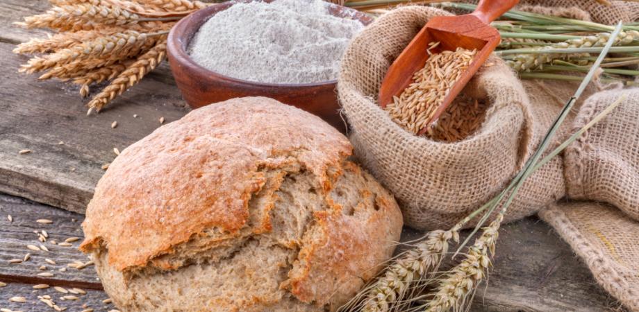 Legambiente Caltanissetta organizza una giornata sui grani antichi locali