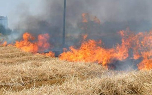 https://www.seguonews.it/agricoltore-cerca-di-spegnere-fiamme-ma-rimane-schiacciato-dal-suo-trattore
