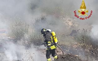https://www.seguonews.it/caldo-e-incendi-fiamme-in-un-maneggio-di-san-cataldo-e-a-serradifalco-in-zona-calvario