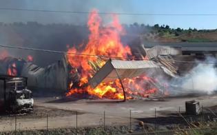 https://www.seguonews.it/incendio-distrugge-un-capannone-di-imballaggi-a-grottarossa-mistero-sul-rogo