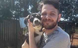 http://www.seguonews.it/il-nisseno-marco-darma-adotta-un-cane-ecco-come-ci-si-sente-un-gesto-che-dovrebbero-fare-tutti