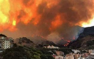 http://www.seguonews.it/m5s-allarsgli-incendi-sono-una-delle-emergenze-principali-della-sicilia-e-come-tali-vanno-trattati-musumeci-ne-prenda-atto