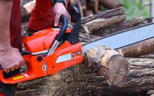 http://www.seguonews.it/resuttano-sega-un-albero-e-gli-cade-addosso-giovane-trasportato-in-codice-rosso-allospedale-santelia