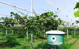 Startup realizzata a Niscemi in finale al Flormart di Padova: un robot monitora le condizioni del terreno