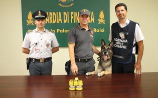 http://www.seguonews.it/beccata-allaeroporto-di-palermo-con-la-crema-alla-marijuana-donna-segnalata