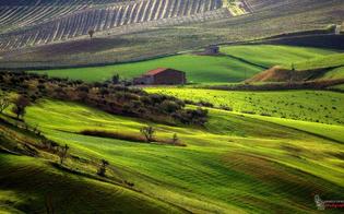 https://www.seguonews.it/caltanissetta-domani-seconda-giornata-con-paesaggi-di-mezzo-fra-mostre-fotografie-e-laboratori