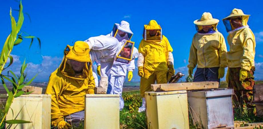 Al via a Caltanissetta un corso pratico di apicoltura, si terrà nella fattoria didattica Torrettella