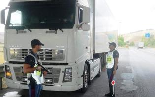 http://www.seguonews.it/caltanissetta-trasporto-non-regolare-di-animali-elevate-dalla-polizia-stradale-sanzioni-per-2500-euro-a-un-camionista