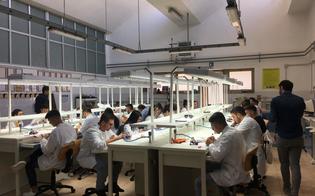 http://www.seguonews.it/esami-di-abilitazione-per-odontotecnici-allipsia-galilei-di-caltanissetta-in-28-superano-la-prova