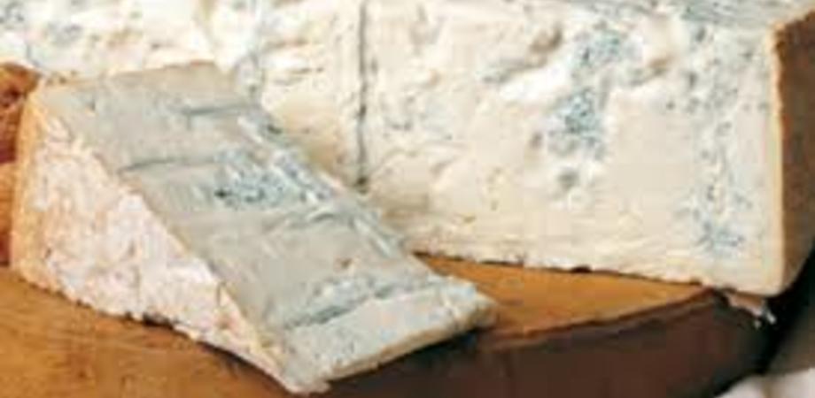 Ritirati dalla Migros gorgonzola e mascarpone, contengono listeria. I prodotti sono già stati rimossi dagli scaffali delle filiali