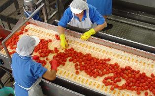 http://www.seguonews.it/la-sicilia-e-la-prima-regione-in-italia-nellindustria-alimentare-a-caltanissetta-sono-443-