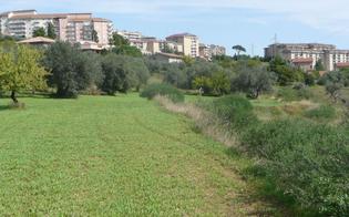 http://www.seguonews.it/caltanissetta-la-proposta-di-ambra-e-licata-un-collegamento-tra-via-romita-e-san-luca-e-la-creazione-di-un-parco-urbano