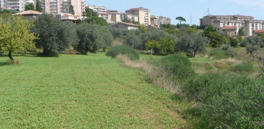 """Caltanissetta, la proposta di Ambra e Licata: """"Un collegamento tra via Romita e San Luca e la creazione di un parco urbano"""""""