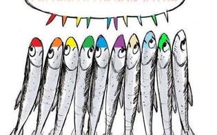 http://www.seguonews.it/nasce-su-facebook-il-gruppo-caltanissetta-non-si-lega-il-popolo-delle-sardine-si-diffonde-a-macchia-dolio