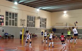 http://www.seguonews.it/volley-lalbaverde-caltanissetta-conquista-tre-punti-fondamentali-contro-il-mauro-sport