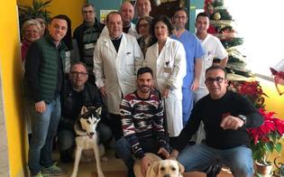 http://www.seguonews.it/teniamo-per-la-zampa-allospedale-di-gela-due-cani-per-far-compagnia-a-pazienti-e-familiari