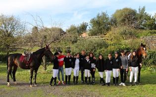 https://www.seguonews.it/agility-horse-lassociazione-amici-del-cavallo-di-san-cataldo-torna-a-casa-con-quattro-campioni-regionali-