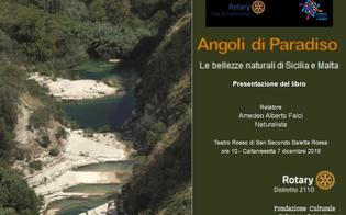 Caltanissetta, il Rotary Club riceve la visita del governatore distrettuale: attenzione rivolta ai temi dell'ambiente