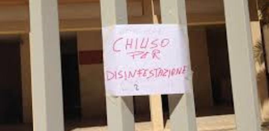 Camera di Commercio di Caltanissetta e Gela, uffici chiusi il 24 dicembre per disinfestazione